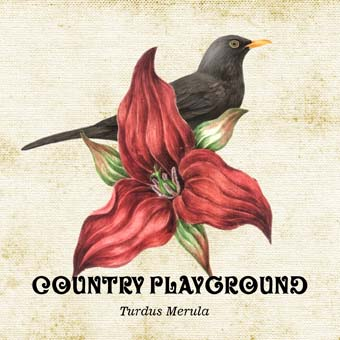 Country_Playground03