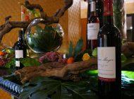 Sofitel Lisbon Liberdade promove Sofitel Wine Days