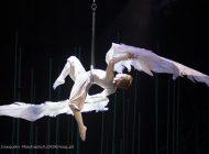 Para lá de Varekai do Cirque du Soleil