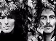 Caixa com todos os álbuns de George Harrison em vinil já disponível