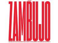 Discografia de António Zambujo reunida em caixa especial