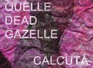 Quelle Dead Gazelle e Calcutá chegam ao Musicbox em Fevereiro