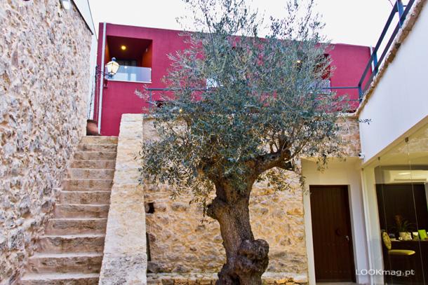 A oliveira centenária que na entrada do hotel dá as boas-vindas aos hóspedes