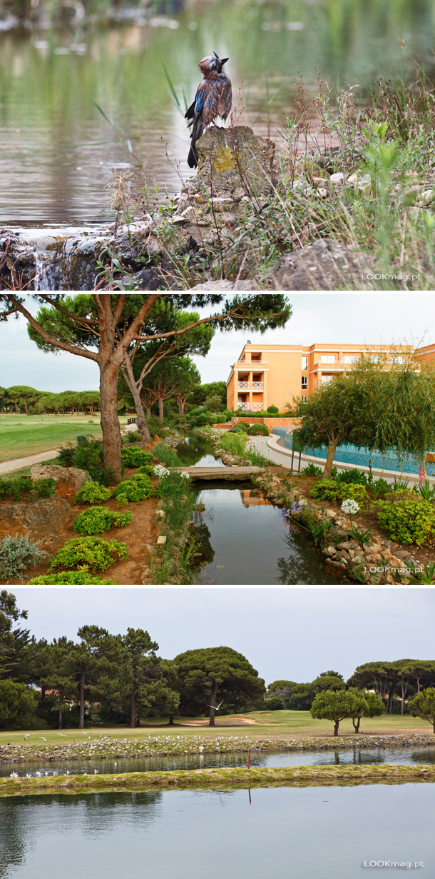Dono de uma localização geográfica privilegiada, o Hotel Quinta da Marinha Resort proporciona uma estada tranquila e retemperadora